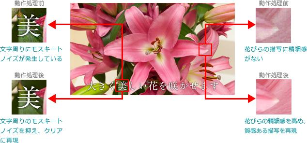 東芝 TOSHIBA レグザ REGZA 32V30 40V30_マスターリファイン
